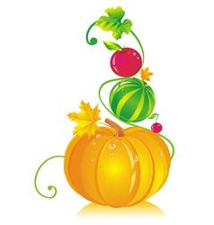 Pumpkins Watermelon Cherry vector image