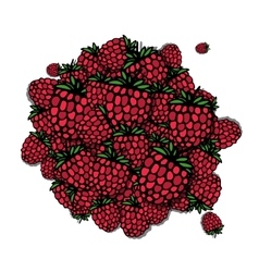 Raspberry frame sketch for your design vector image