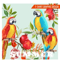 Tropical Graphic Design Parrot Birds Pomegranates vector