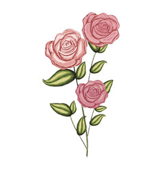 colorful realistic flowered roses with leaves and vector image