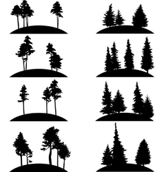 set of different landscapes with trees vector image vector image