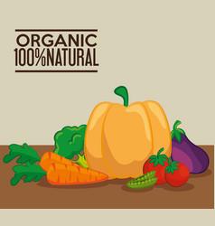 organic vegetables design vector image vector image