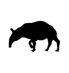 Black silhouette of tapir isolated image vector