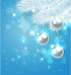 Blue Christmas background with white pine branch vector image
