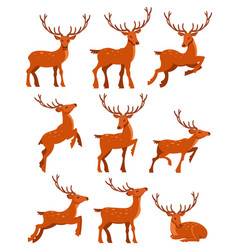 Cute deer set spotted deers in different poses vector