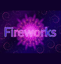 firework lilac on black vector image