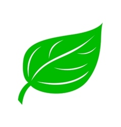 Green leaf icon simple style vector image