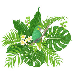 Green parrot and tropical plants vector