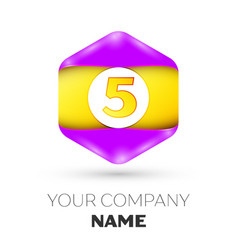 number five logo symbol in the colorful hexagonal vector image