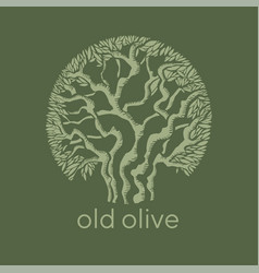 Old mediterranean olive tree decorative silhouette vector