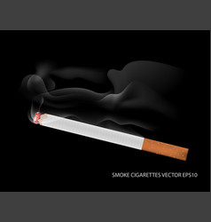 Smoke and cigarettes vector
