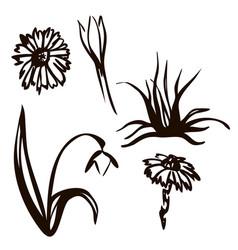 spring set drawn in black vector image