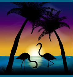 Two silhouettes of flamingos in the background of vector