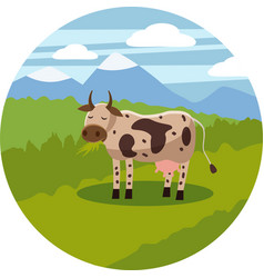 a cow grazes in a meadow eating grass in a vector image