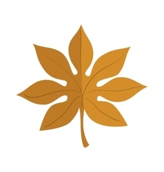 autumn dry leaf vector image
