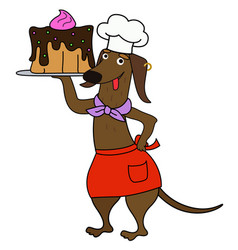 Cartoon dachshund chef with a cake vector