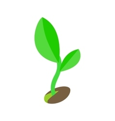 Green sprout in the ground icon vector