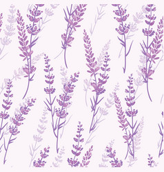 Lavender floral purple seamless pattern vector