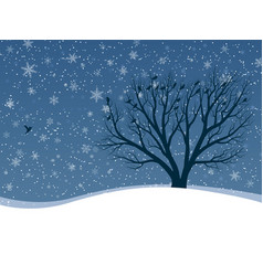 winter card of snowfall with trees vector image