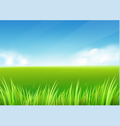 meadow field summer or spring nature background vector image