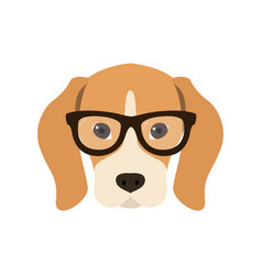 beagle in glasses cute dog vector image