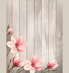 nature spring background with beautiful magnolia vector image vector image