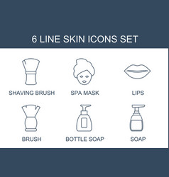 6 skin icons vector