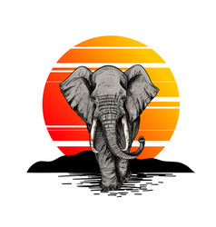 Bic elephant front view sunset on background vector