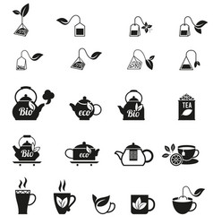 Cups of fresh tea and green leaves vector