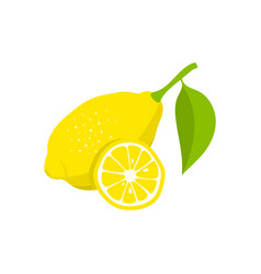 lemon and slice of lemon on white background vector image