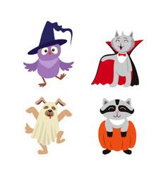 flat halloween dressed up animals set vector image vector image