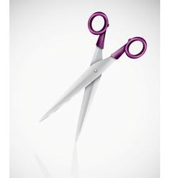 Isolated scissors vector image