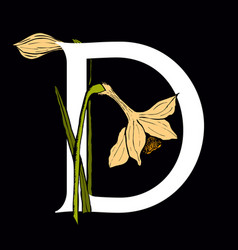 letter d with daffodil flower vector image vector image