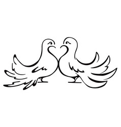 Beloved couple doves on vector
