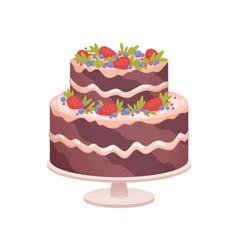 Chocolate sponge cake on plate for birthday vector