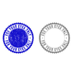 grunge for your eyes only textured stamp seals vector image