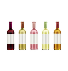 wine bottles mock up set glass flasks blank label vector image