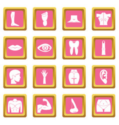 body parts icons pink vector image vector image