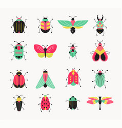 Bugs insects butterfly ladybug set vector