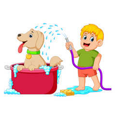 A boy is cleaning his brown dog in the red pail vector