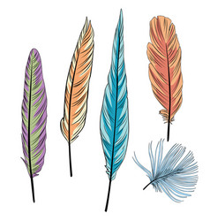 Colorful of feather vector