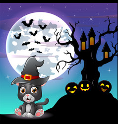 halloween grey kitten wearing witches hat with tre vector image