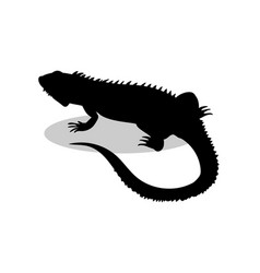 Iguana lizard reptile black silhouette animal vector