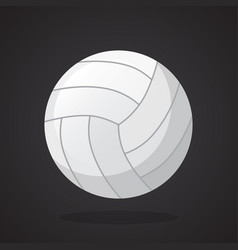 leather volleyball ball vector image