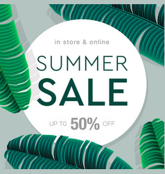 summer sale banner poster with palm leaves jungle vector image