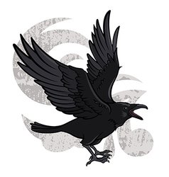 Flying Raven vector image