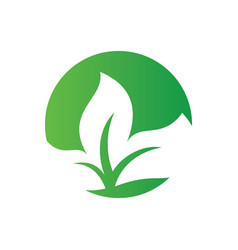 logos of green leaf ecology vector image