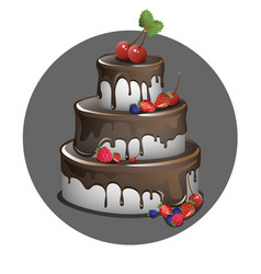 cake with berries and chocolate vector image