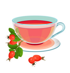 tea with rose hips in transparent glass and saucer vector image vector image