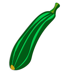 A zucchini or color vector
